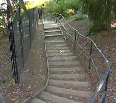 UCLA's Rape Trail also known as the Saxon Steps which connects the Saxon Residential Suites to Gayley Avenue